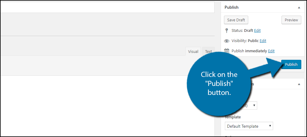 """click on the """"Publish"""" button"""