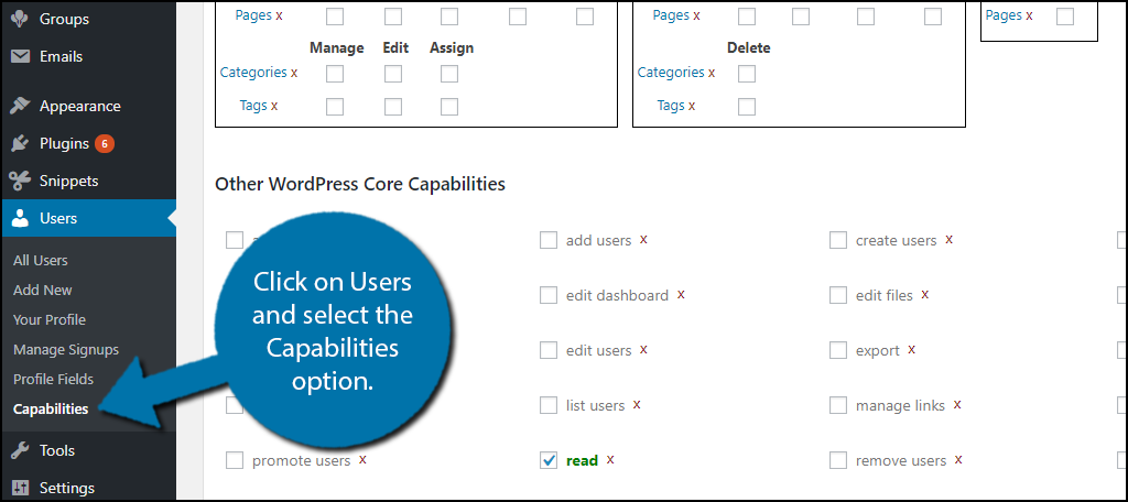 click on Users and select the Capabilities option.