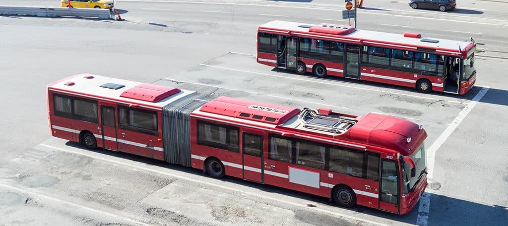 solar buses
