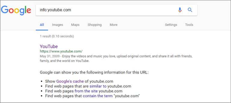 Google Search Info