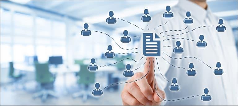 Assign User Roles