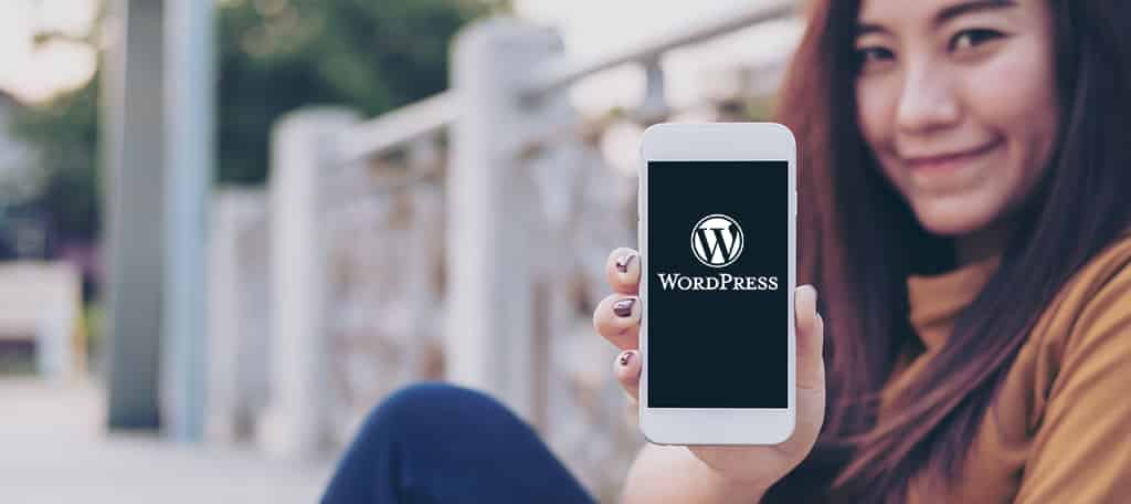WordPress is Key to any Business
