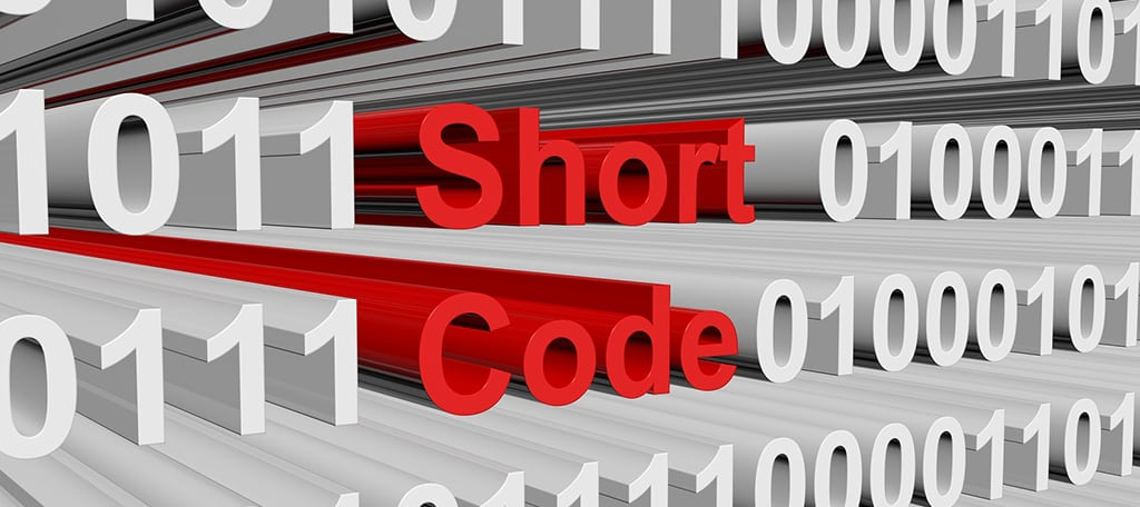 Customization through Shortcodes