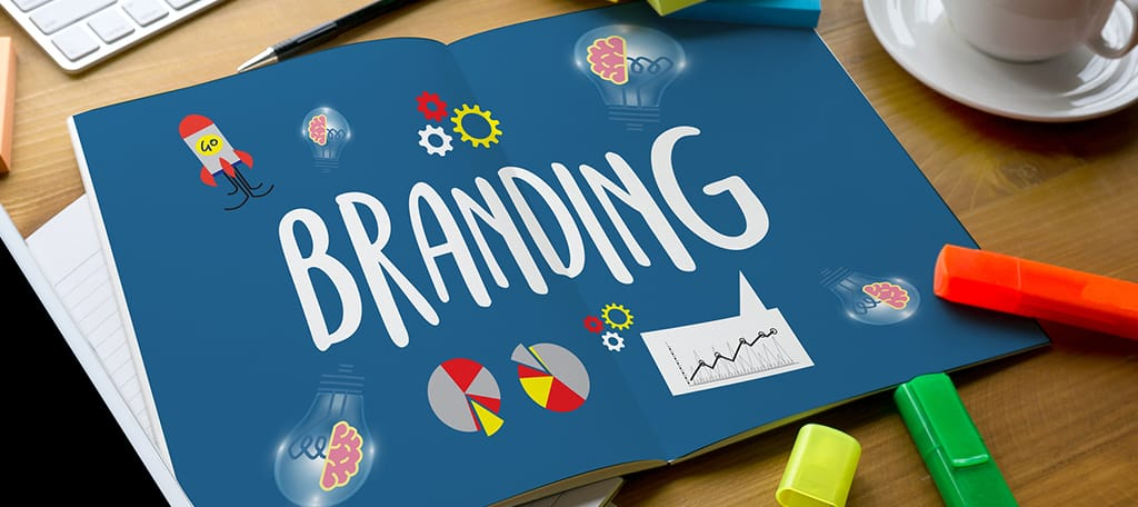 Develop the Brand's Identity