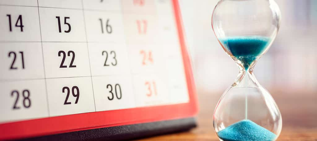 Create a Content Schedule
