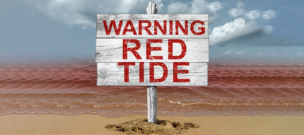 What Causes Red Tide