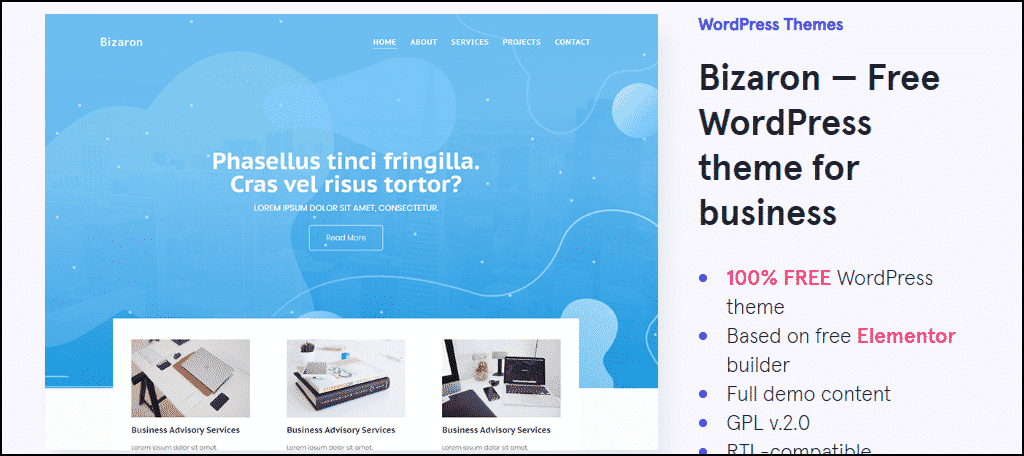 Bizaron WordPress theme