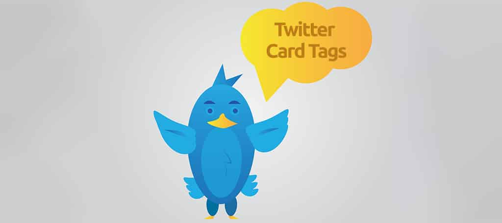Twitter Card Tags