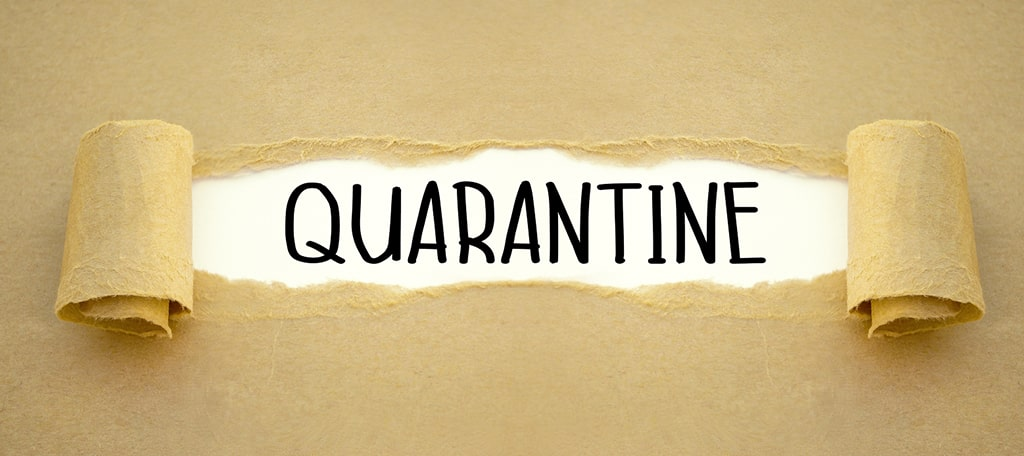 """Domains in """"quarantine"""" status cannot be reactivated or transferred by UK citizens"""