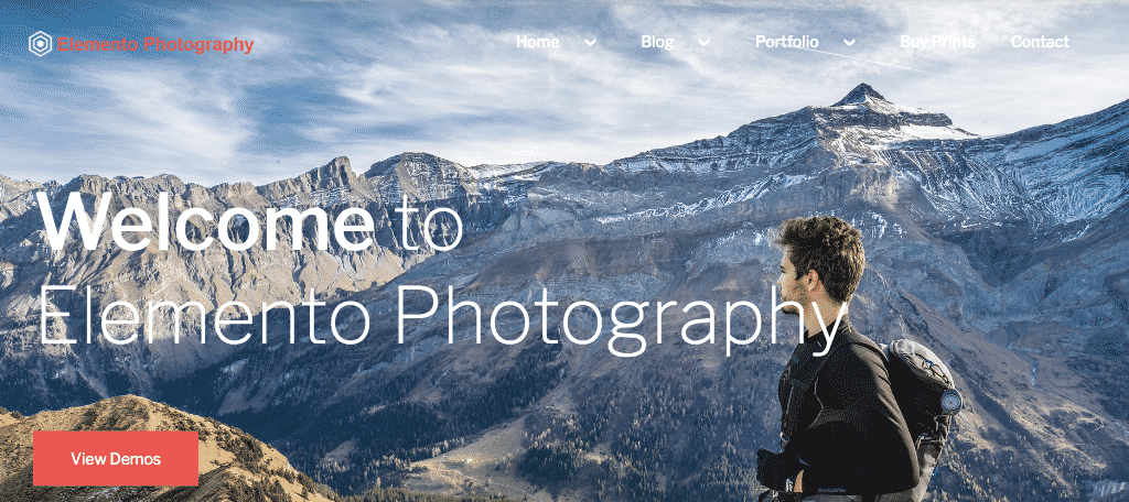 Elemento gutenberg photography theme