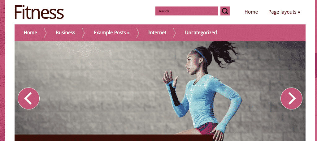 Free wordpress fitness theme