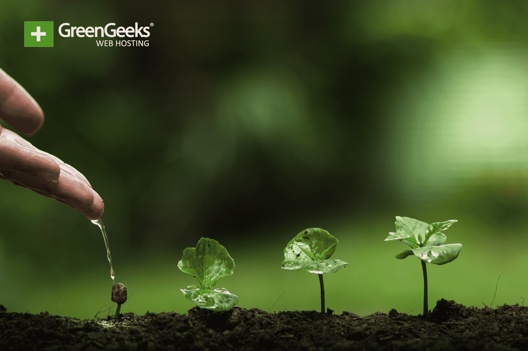 Restoring Forests
