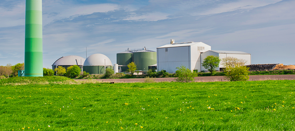 Renewable Energy Biogas