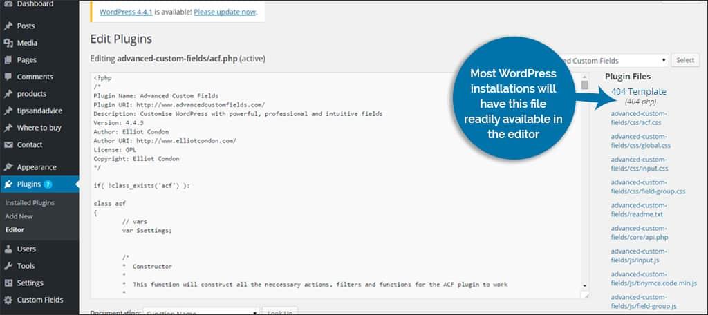 error 404 from wordpress flies