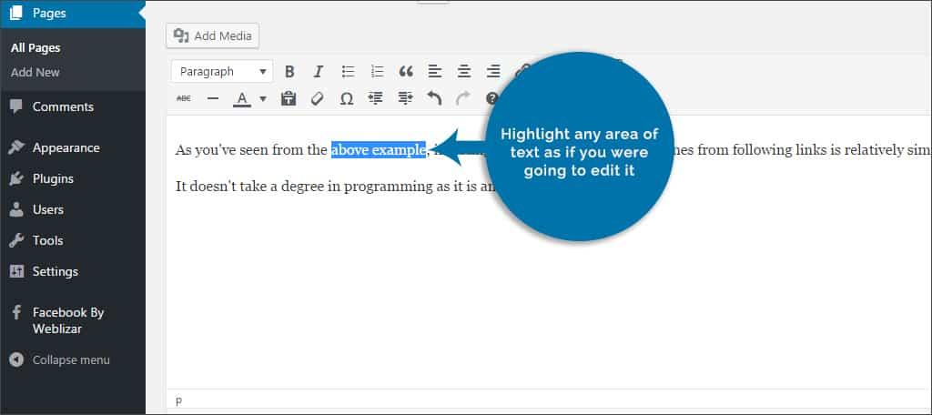 highlight any area of text