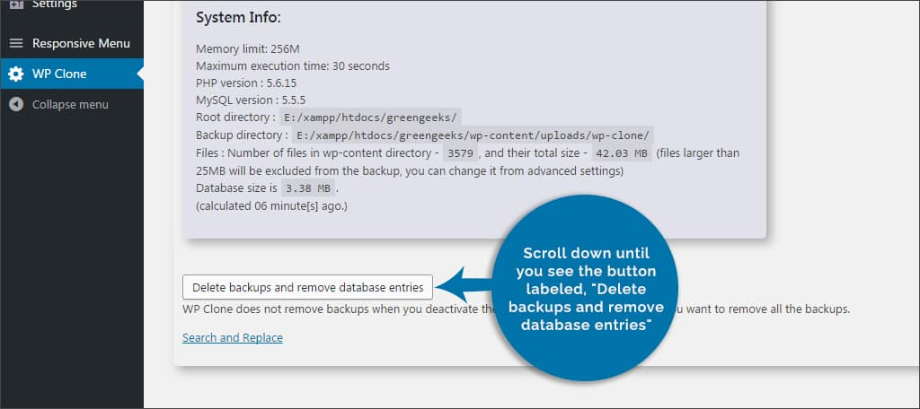 delete backups and restore databases