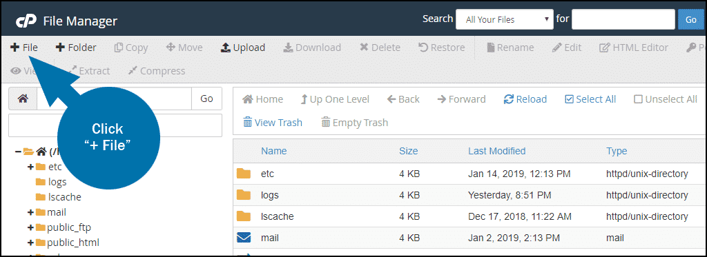 cPanel file manager new file step 1