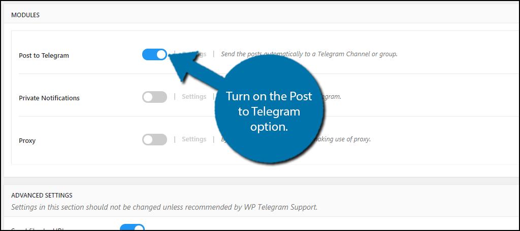 Post to Telegram