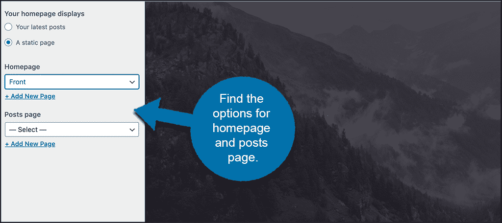 Homepage settings under customize for WordPress posts on page