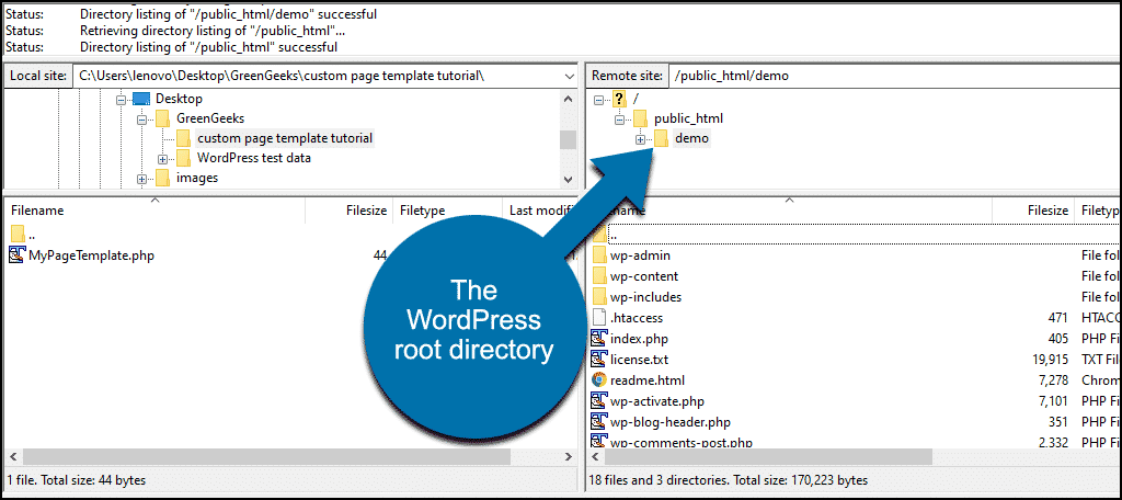 WordPress root directory