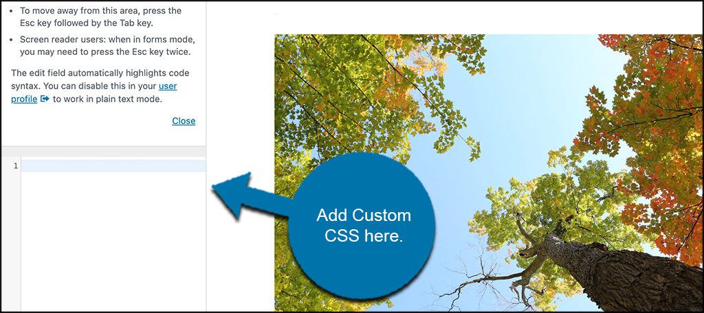Add custom css box