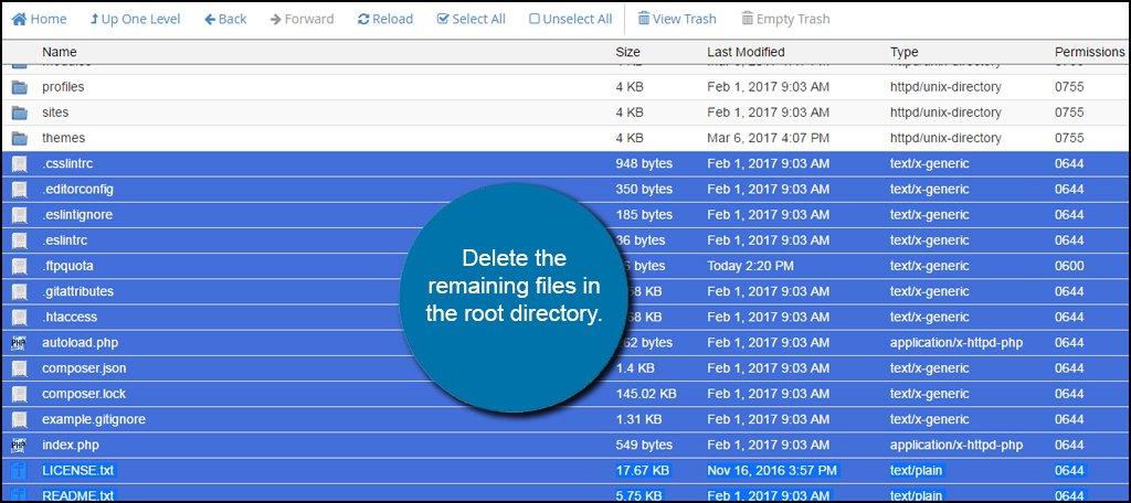Delete Drupal Files