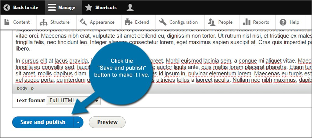 Drupal Page Save