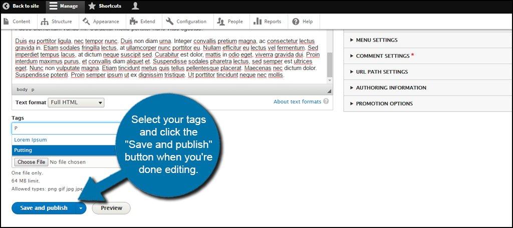 Drupal Select Tags