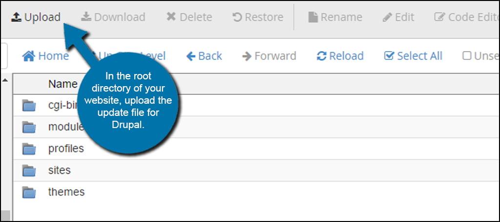 Drupal Update Upload File