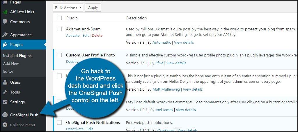 WordPress OneSignal Push