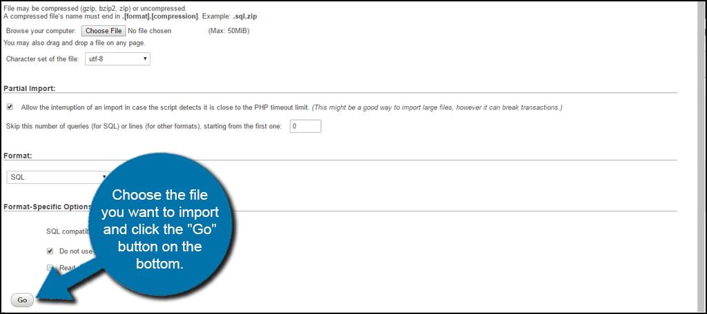 Go Import Database
