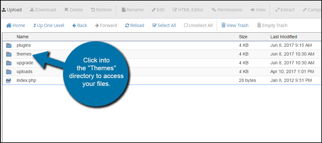 Themes Folder