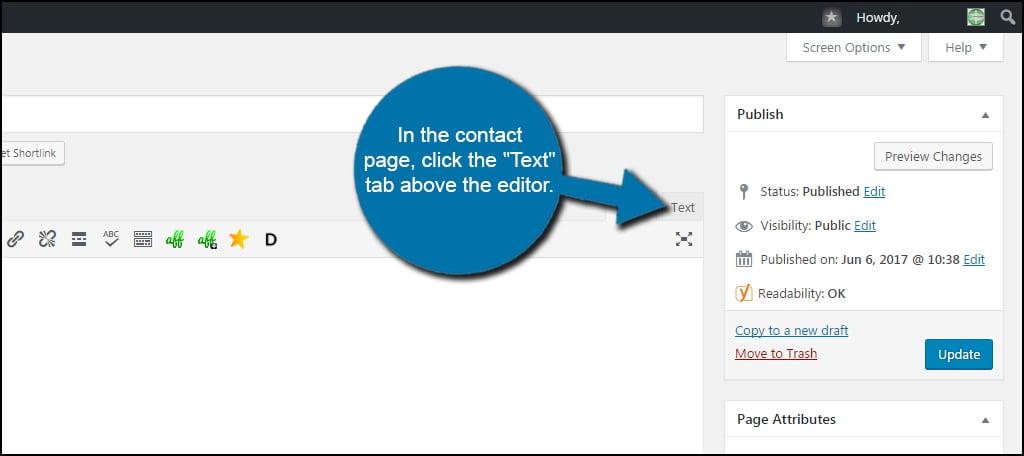 WordPress Text Tab