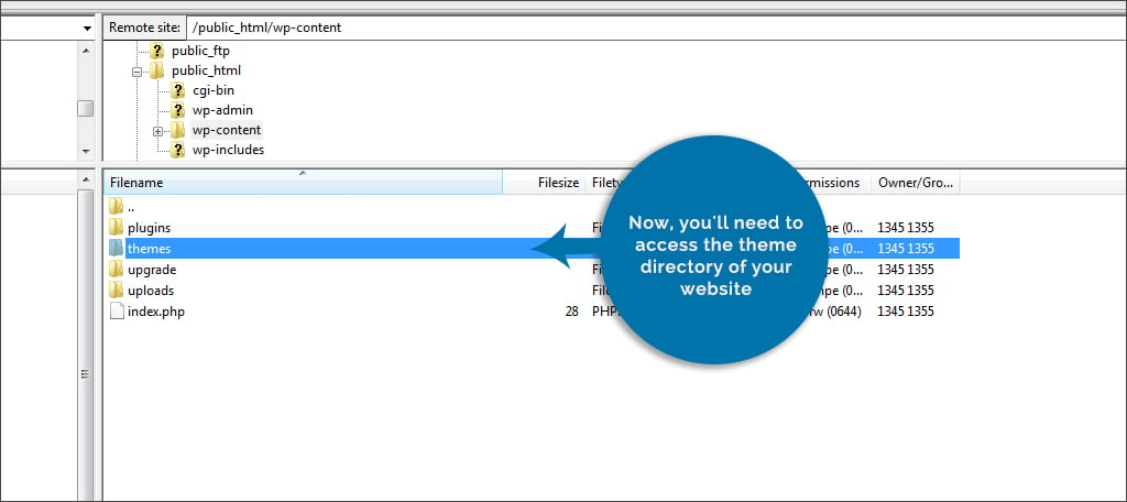 Access Theme Directory
