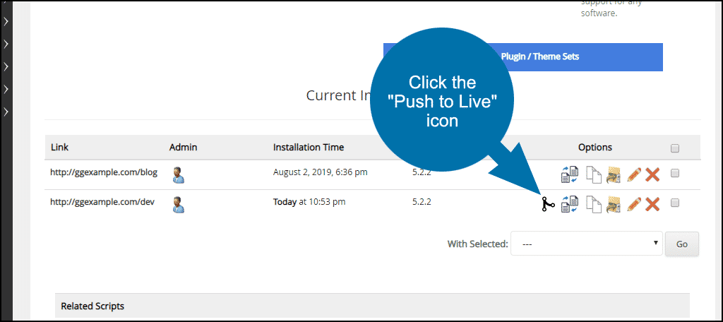"click the ""push to live"" icon"