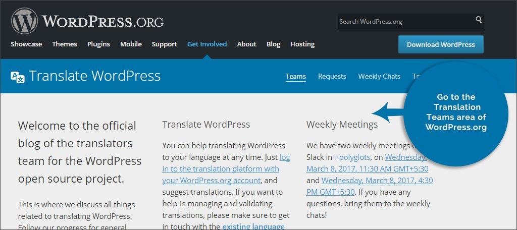 Go to Translation Teams Area of WordPress.org