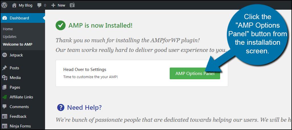 AMP Options Screen