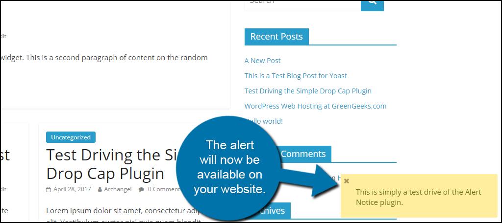 Alert Notice Example