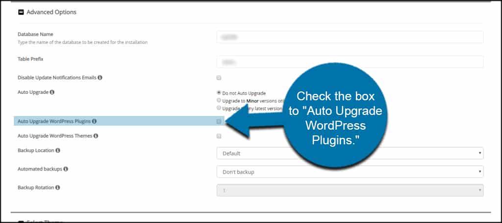 Auto Upgrade Plugins