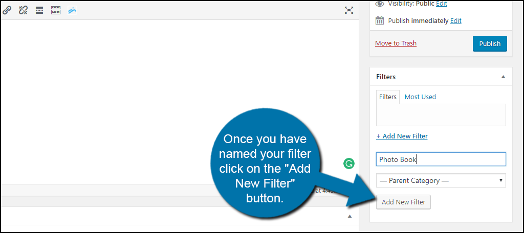 "Once you have named your filter click on the ""Add New Filter"" button."