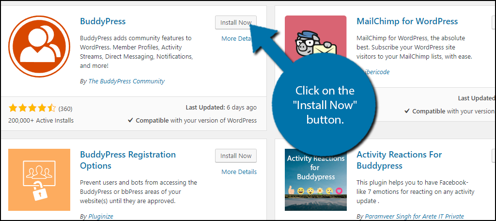 "click on the ""Install Now"" button and activate the plugin for use."