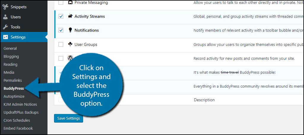 click on Settings and select the BuddyPress option.