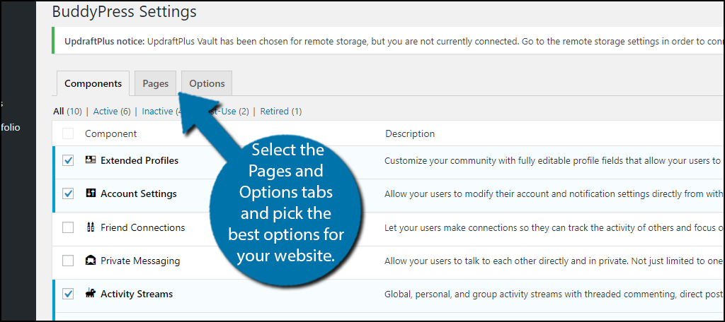 go through the Pages and Options tabs and pick the best options for your website.
