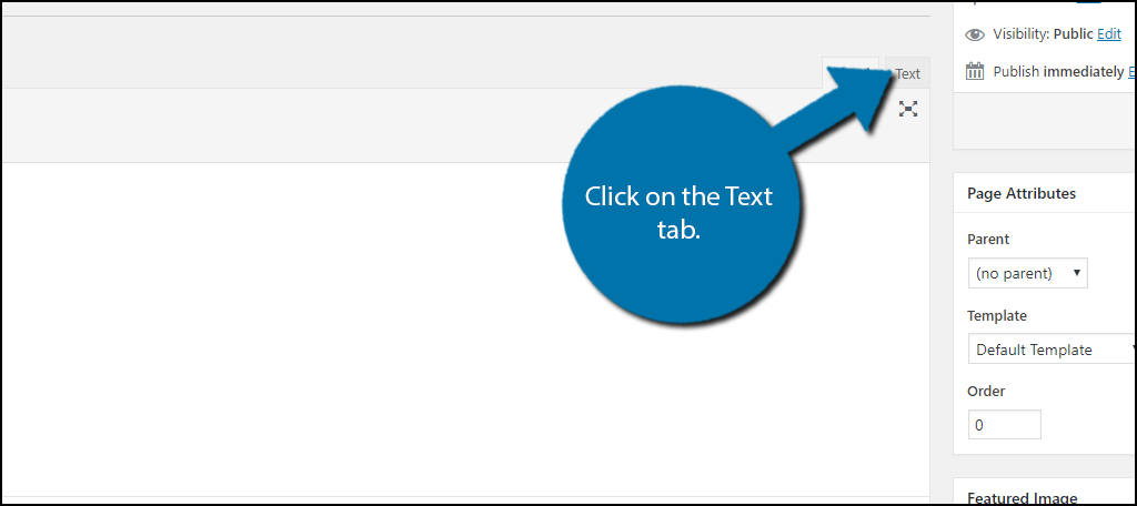 click on the Text tab.