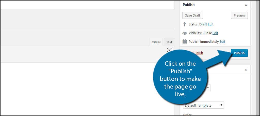 "click on the ""Publish"" button"