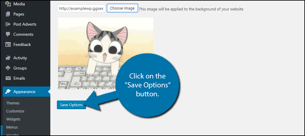 "click on the ""Save Options"" button."