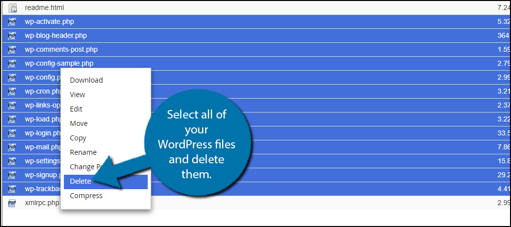 elect all of your WordPress files and delete them.
