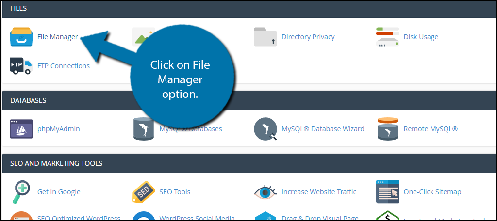 click on File Manager option.