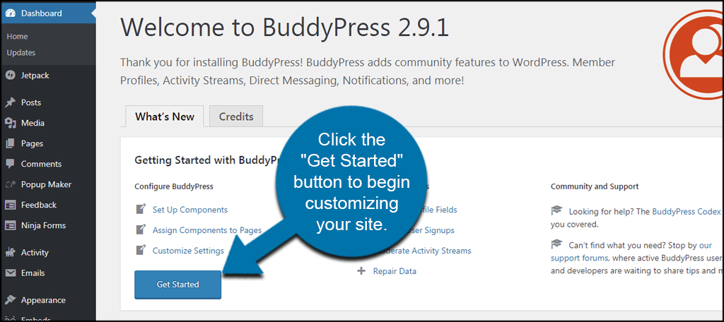 Customize BuddyPress