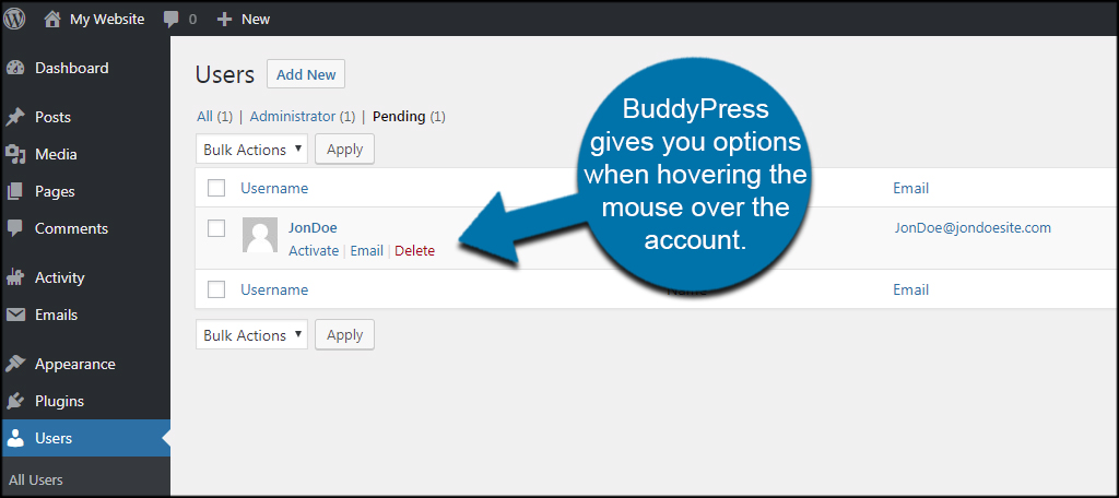 BuddyPress Options